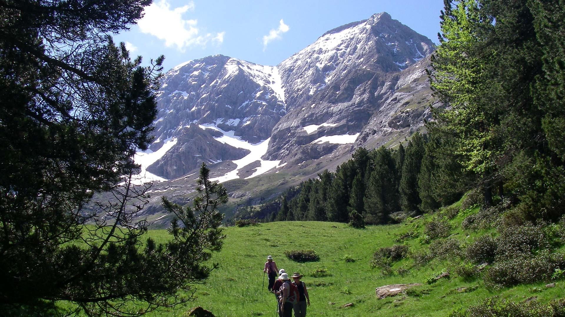 mountain habitat for kids