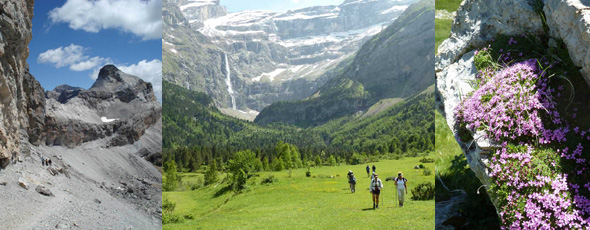 Discovery level or intermediate level guided walking and trekking