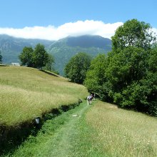 Pyrenees walking holiday - descent from Viella